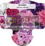 Petunia Double Mixed