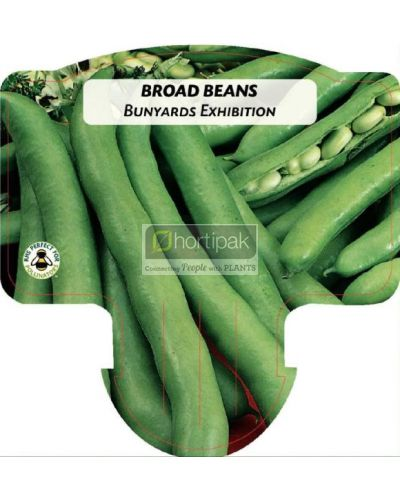 Broad Bean Bunyards Exhibition
