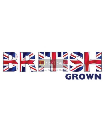 British Grown Plants