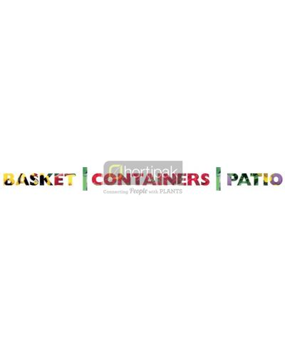 Basket, Patio and Containers