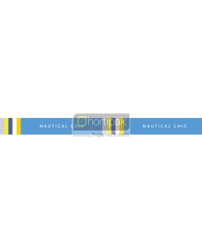 Trends Nautical Chic Bench Tape