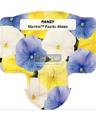 Pansy Matrix Pastel Mixed