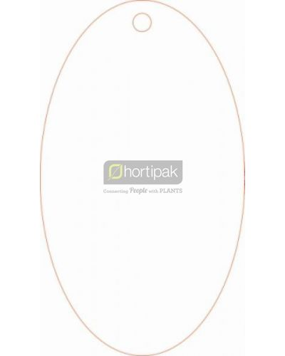 Plain labels 55 x 95mm - oval label - with elastic tie